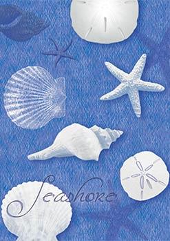 Blue Water Shells