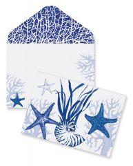 Boxed Notes - Blue Indigo Shells