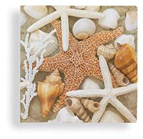 Beverage Napkin - Beach Walk Shells